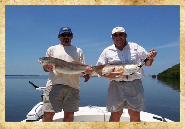 InshoreCharters Tampa Charter Boat Fishing