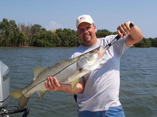 snook fishing St. Pete