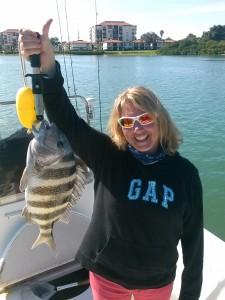 Fishing Tampa Bay sheepshead