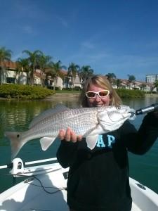 Fishing Tampa Bay redfish